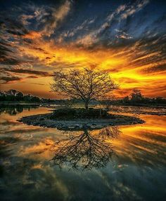 Find images and videos about beauty, nature and landscape on We Heart It - the app to get lost in what you love. Nature Pictures, Cool Pictures, Beautiful Pictures, Amazing Sunsets, Amazing Nature, Beautiful World, Beautiful Places, Beautiful Beautiful, Landscape Photography