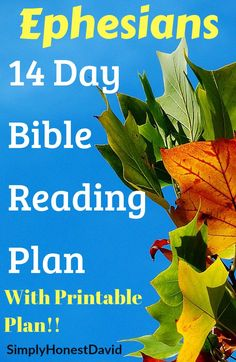 Get this FREE printable reading plan of Ephesians and spend the next 2 weeks LOVING this fantastic Epistle! Ephesians is definitely one of my favorite letters in the New Testament. Reading For Beginners, Reading Tips, New Testament, Learn To Read, Helpful Hints, Free Printables, Bible, Study, Letters