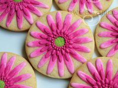 Gerbera-Daisy-SweetAmbs2