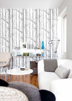 Livingroom, Photo: Mikko Ala-Peijari / Kauniit Kodit Own Home, Shag Rug, Living Room, Rugs, Home Decor, Shaggy Rug, Farmhouse Rugs, Decoration Home, Room Decor