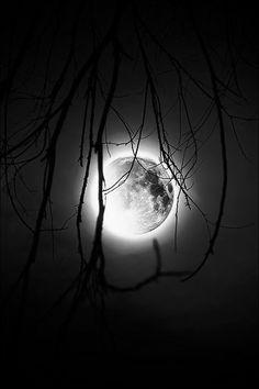 Moonlight   Very cool photo blog