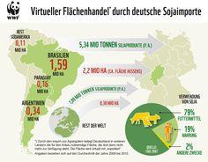Virtueller Flächenhandel durch deutsche Soja-Importe