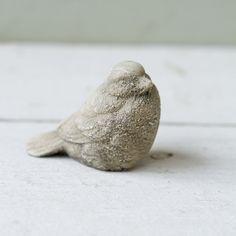 Rock Garden Sparrow
