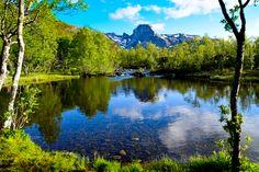 Elv og skog med Steigtind i bakgrunnen     http://www.tursiden.no/elv-og-skog-med-steigtind-i-bakgrunnen/
