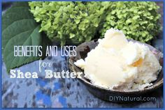 One of our favorite ingredients! You've likely seen Shea butter mentioned in many DIY beauty recipes. Shea butter benefits as an anti-inflammatory, moisturizer, UV protectant, and more! Read more and discover our favorite ways to use it! Homemade Sunscreen, Homemade Moisturizer, Natural Sunscreen, Homemade Body Care, Homemade Beauty Products, Natural Products, Uses For Shea Butter, Perfume, Beauty Recipe