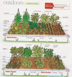 How To Lay Out A Garden Gorgeous Small Garden Layout 17 Best Ideas About Vegetable Garden Growing Plants, Growing Vegetables, Vegetable Garden Planning, Vegetable Gardening, Vegetable Garden Layouts, Backyard Layout, Small Garden Layout, Italian Garden, Garden Types