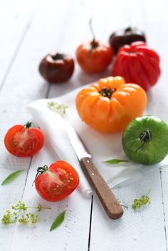 fresh food // nom // tomatoes // garden