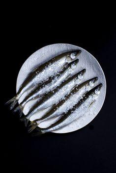 FORMAT PORTFOLIO-HORIZON THEME. VERY COOL whitney ott, whitney ott photography, photography, food, food photography, fish, sardines, salt, dark, still life