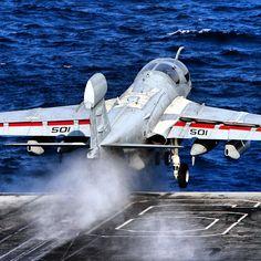 "Grumman EA-6B ""Prowler"""