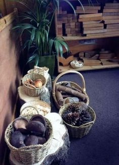 Providing an indoor space filled entirely with natural objects will allow the children to expand their imaginations and creative play abilities. New objects can be added as the changing seasons make them available to continuously provide new e Reggio Inspired Classrooms, Reggio Classroom, Classroom Organisation, Classroom Ideas, Block Center, Block Area, Childcare Environments, Natural Play Spaces, Preschool Rooms