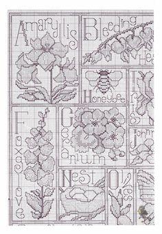 Gallery.ru / Фото #3 - D_W 2492_Floral ABC - Marishecka