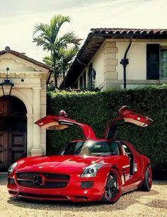 Gullwing Benz