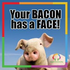Go vegan.     #VeganCommunity #GoVegan #vegetarian #animalrights #veganrules #veganhealth #veganpeople #crueltyfree #veganfun #bestofvegan #eartlings #bestveganrecipes #veganfoodshare #veganfoodlovers #plantbased #vegan #vegantips #veganmexico #veganmadrid #vegano #pet #yoga #vegantosavetheearth #VeganWarrior #veganpower #herbivore #animalabuse #veganitaly #vegannyc #veganlifestyle by vegancommunity