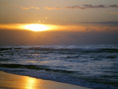 Gulf Shores, AL - our favorite summer vacation spot