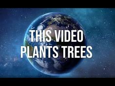 1 tree for every 1,000 views   We pledge, how about you?
