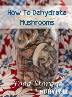 How to Dehydrate Mushrooms - Food Storage and Survival