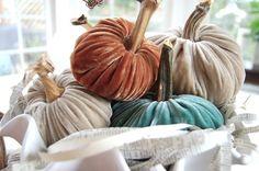Plush Pumpkins