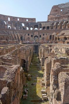 Inside the Colosseum, Rome, Italy. Find out how you can get the cheapest Flights .. https://www.flightfishing.com/