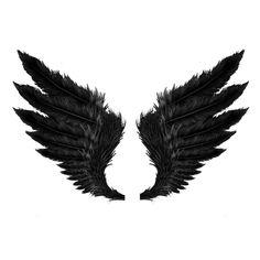 transparent angel wings   Tumblr