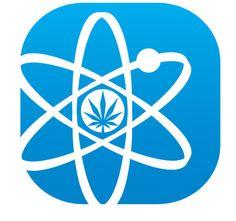 The Ten Best Cannabis Research Studies of 2013