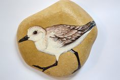 One of my favorite birds! This stone is hand painted by me. Find him on my etsy! Gray Owl Paint, Foxtail Grass, Harry Potter Parts, Shark Painting, Great Grey Owl, Hand Painted Rocks, Snowy Owl, Nature Paintings, My Little Girl