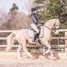 Are you looking for unique horse equipment? Equestroom offers eye-catching equestrian equipment at very competitive prices. Shopping for horse tack is easy with Equestroom! Woman Riding Horse, Horse Riding Clothes, Beautiful Horse Pictures, Beautiful Horses, Horse Saddles, Horse Saddle Pads, Saddle Rack, Western Saddles, Horse Accessories