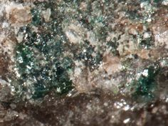 Magnussonite, Mn++5As+++3O9(OH,Cl), Hausmannite, Calcite, Långban, Filipstad, Värmland, Sweden. Dark green grains (with some crude faces, though) of magnussonite, a Mn arsenite with Cu admixture giving its a typical colour.  The mineral grows in hausmannite-calcite matrix. Fov 2.3 mm.  Copyright: © Ł Kruszewski 08