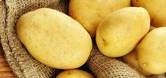 Fächerkartoffeln – Tipps und Rezepte