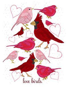 Red/pink birds