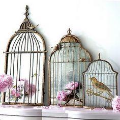 J'adore Birds