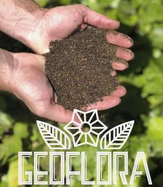 and are Easy to use granular organic fertilizers designed for gardeners of all types. Making the switch has never been this easy! Just add Geoflora and water to your grow and see what happens! Organic Nutrients, Organic Fertilizer, Organic Recipes, Healthy Lifestyle, Flora, Gardening, Healthy Recipes, Vegetables, Natural