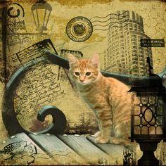 DIY diamond painting diamond embroidery cat decorative pictures of rhinestones hobbies and crafts home decoration Hobbies And Crafts, Home Crafts, Sewing Crafts, Diy, Embroidery, Fabric, Arts, Painting, Animals