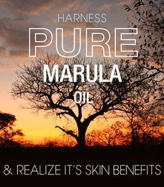 Want to Get Rid of Wrinkles and Fine Lines Fast? Try Marula Oil -