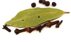 Prevent mosquito bites naturally using essential oils: neem, lemon oil and clove oil. Prevent mosquito bites by using natural methods and not chemicals. Bay Leaves, Plant Leaves, Low Cost Dental Care, Budget Clean Eating, Health And Wellness, Health And Beauty, Clove Essential Oil, Clove Oil, How To Treat Acne
