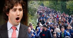 LOL! Justin Trudeau is in PANIC MODE and Tells Illegals to STOP COMING IN! – TruthFeed