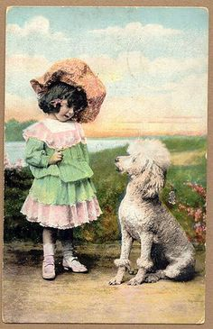 """""""she is telling me I will have to wear dresses like her-I am a boy poodle GeeZE!"""""""