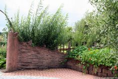 Сады Аппельтерн | Ландшафтный дизайн садов и парков