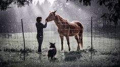 I Heart Animals Photo Contest Finalists