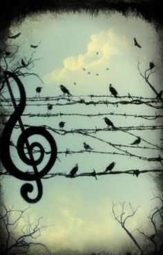 Music truly is everywhere.