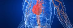 30 ways to keep your heart healthy (Thinkstock)