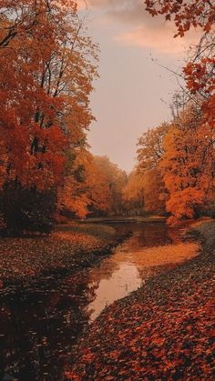 40+ Free Amazing Fall Wallpaper Backgrounds For iPhone