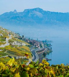 Photographies » Coloria | graphisme, photos, pubs | Vevey Vevey, Portrait, Photo Studio, Images, Photos, Mountains, Landscape, Nature, David