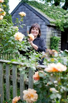 "Ina's Garden: ""I've never met an apricot rose that I didn't love.  Right now I have Autumn Sunset roses climbing on my fence, Pat Austin roses climbing on my wall with clematis and lavender, and my favorite of all is Just Joey hybrid tea roses in my cutting garden."""