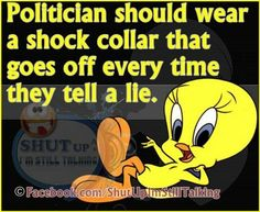 In Hillary's case the shock collar would be going at the speed of a machine gun! Looney Tunes Funny, Funny Cartoons, Funny Jokes, Funny Emoji, Self Control Quotes, Tweety Bird Quotes, Words Quotes, Life Quotes, Favorite Cartoon Character