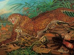 Ligabue was born in Switzerland and died in Italy. Tigers and leopards were frequent motifs in his work. This beast is just magnificent! Henri Rousseau, Henri Matisse, Wildlife Paintings, Animal Paintings, Blood Art, Tiger Art, Religious Pictures, Art Database, Naive Art