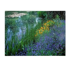 'Monet's Lily Pond' by Kathy Yates Photographic Print on Canvas