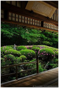 Rhododendrons begin to bloom in Shisendo temple (詩仙堂), Kyoto | Flickr - Photo Sharing!
