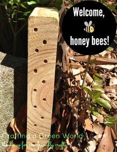 Build a Honey Bee Habitat from Scrap Wood