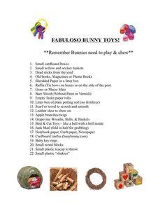 Bunny toy ideas Rabbit Toys, Bunny Toys, Bunny Rabbit, Bing Bunny, Holland Lop Bunnies, Little Bunny Foo Foo, Bunny Cages, Benjamin Bunny, Dora