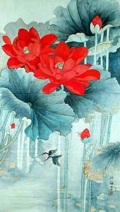 'Red Lotus Flowers' Artist unknown (Band C) Japanese Painting, Chinese Painting, Chinese Art, Japanese Art, Art And Illustration, Botanical Illustration, Art Watercolor, Watercolor Flowers, Silk Painting